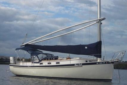 Nonsuch Ultra for sale in United States of America for $53,900 (£38,373)