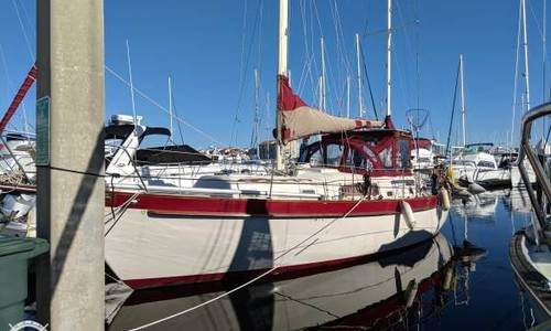 Image of Irwin Yachts 37 CC for sale in United States of America for $59,000 (£45,308) Ponce Inlet, Florida, United States of America