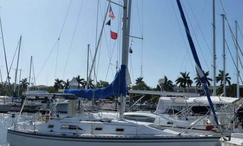 Image of Hunter 31 for sale in United States of America for $19,750 (£14,835) Venice, Florida, United States of America