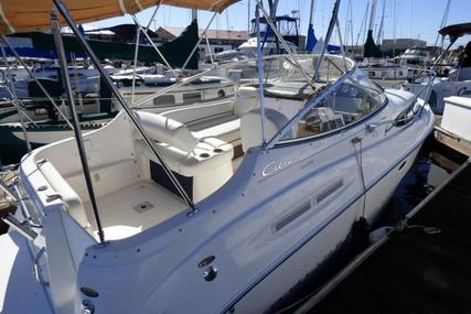 Bayliner Ciera 2455 Sunbridge for sale in United States of America for $24,900 (£18,748)