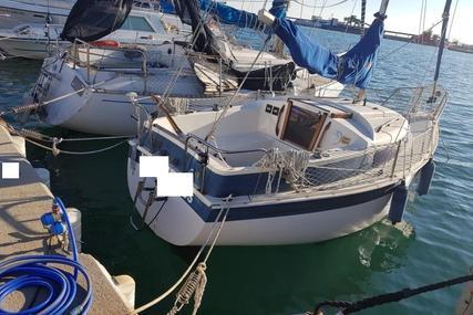 Newbridge Navigator 19 for sale in Spain for €5,500 (£4,809)