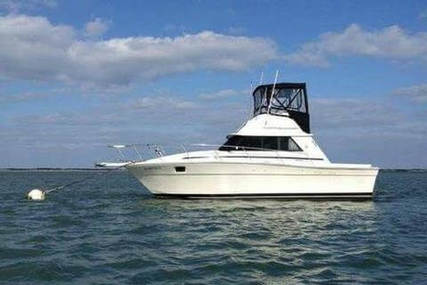 Silverton 31 C for sale in United States of America for $15,000 (£10,593)