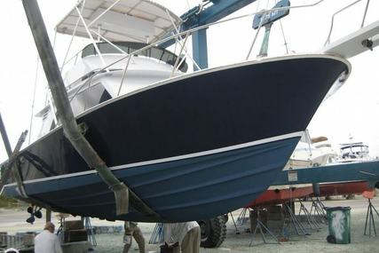 Blackfin 32 for sale in United States of America for $72,900 (£54,179)
