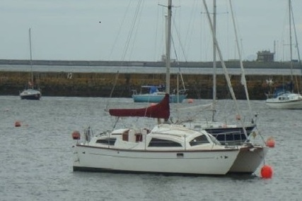 Heavenly Twins 27 for sale in United Kingdom for £28,000