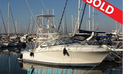 Image of Luhrs 31 for sale in Italy for €80,000 (£69,914) la spezia, Liguria, Italy