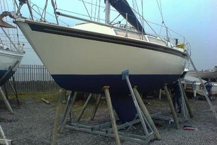 Westerly Merlin for sale in Ireland for €19,900 (£17,397)