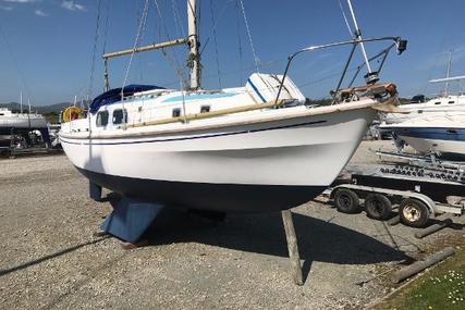 Westerly Berwick for sale in United Kingdom for £8,995