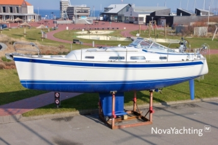 Hallberg-Rassy 310 for sale in Netherlands for €128,500 (£111,837)