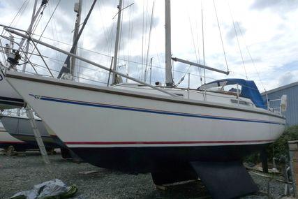 Sadler 29 bilge keel for sale in United Kingdom for £19,950