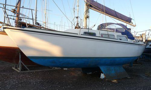 Image of Jaguar Yachts 27 for sale in United Kingdom for £8,995 Brightlingsea, United Kingdom