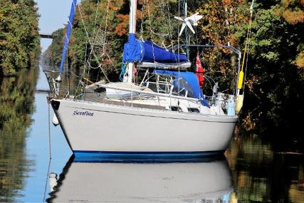 Colvic Countess 37 for sale in Panama for 45.000 £