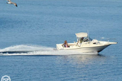 Sea Master 2388 WA for sale in United States of America for $17,500 (£12,529)