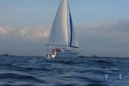 NAUTI/POLONIA FOCUS 850 for sale in Italy for €30,000 (£26,329)