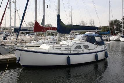 MIDGET 31 for sale in United Kingdom for £48,950