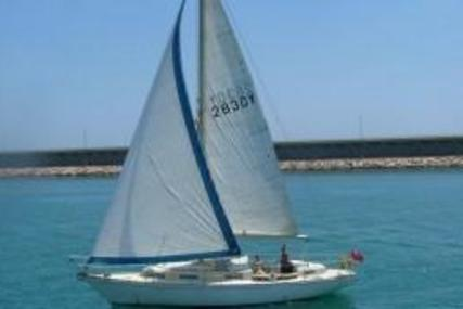 Warrior 35 for sale in Spain for €18,500 (£16,217)