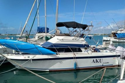 Skipjack 27 Flybridge for sale in United States of America for $39,000 (£29,046)