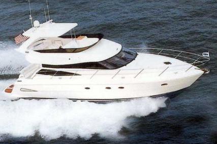 Neptunus 56 Flybridge for sale in United States of America for 399.000 $ (285.823 £)