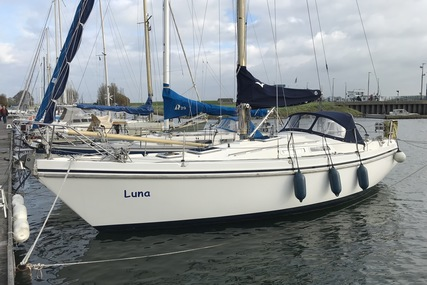 Contest 31 ht for sale in Netherlands for €28,500 (£25,044)