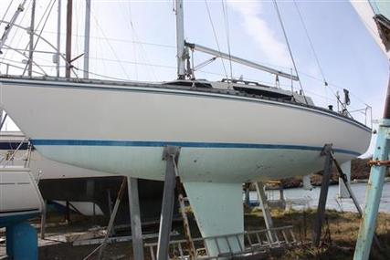 Angus Richardson Pacesetter 28 for sale in United Kingdom for £6,500