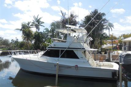 Viking Yachts Convertible for sale in United States of America for $95,000 (£74,785)