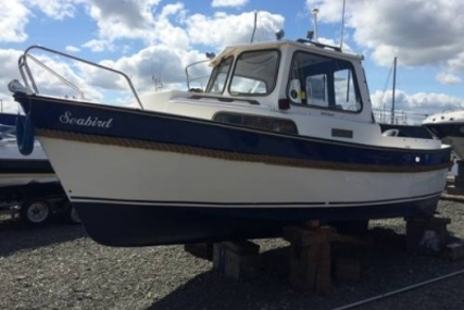Hardy Marine HARDY 20 FAMILY PILOT for sale in United Kingdom for £10,500