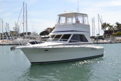 Riviera Flybridge Sportfish for sale in United States of America for $149,000 (£106,394)