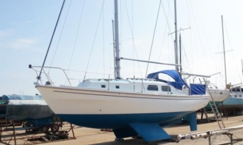 Image of Westerly 31 Berwick for sale in United Kingdom for £15,950 WALTON ON THE NAZE, United Kingdom