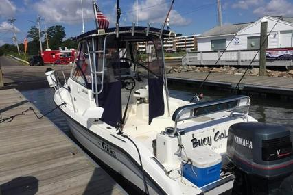 Cobia 240 Walkaround for sale in United States of America for $22,800 (£17,133)