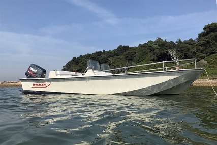 Boston Whaler 17 Supersport Limited for sale in United Kingdom for £8,995