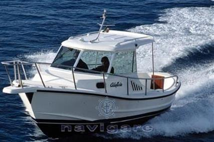 CALAFURIA 7 for sale in Italy for €12,000 (£10,503)