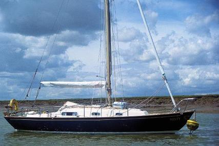 Contessa 26 for sale in United Kingdom for £9,950