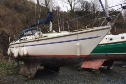 Sadler 29 for sale in United Kingdom for £2,500