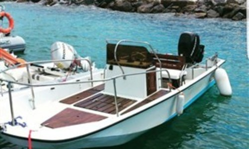 Image of Boston Whaler 17 Montauk for sale in Italy for €11,000 (£9,607) Liguria, Italy