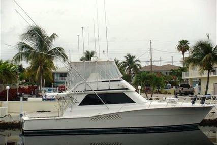 Viking Yachts Convertible for sale in United States of America for $179,000 (£140,912)