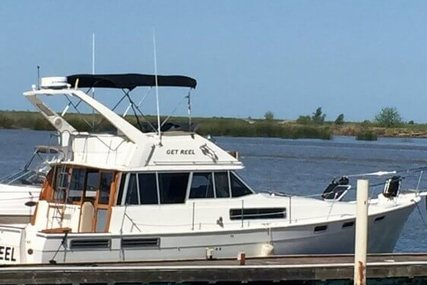Bayliner 3888 Double Cabin Flybridge for sale in United States of America for $80,000 (£59,387)