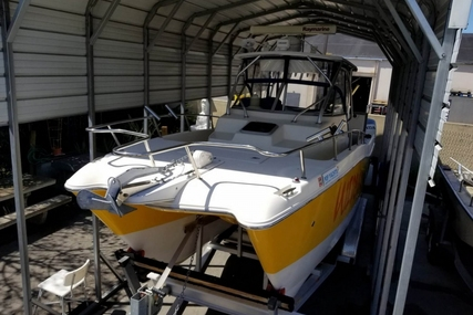 World Cat 266 Sport Cuddy for sale in United States of America for $73,900 (£55,509)