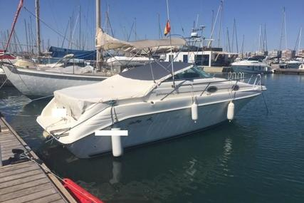Sea Ray 250 Sundancer for sale in Spain for €16,500 (£14,737)