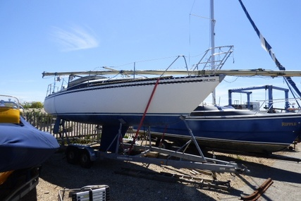 Neptun 27 for sale in United Kingdom for £5,000