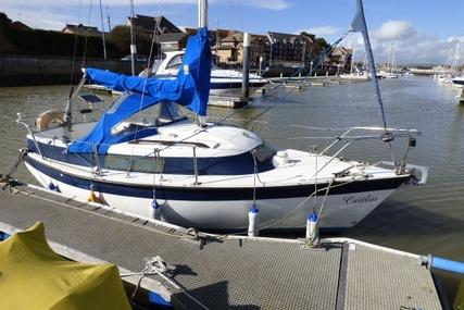 - Newbridge Navigator for sale in United Kingdom for £1,750
