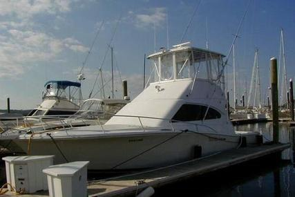 Luhrs Convertible for sale in Mexico for $120,000 (£91,373)