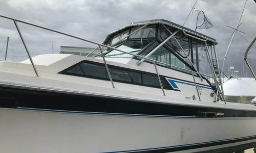 Image of Wellcraft 3200 Coastal for sale in United States of America for $17,000 (£12,289) New Milford, Connecticut, United States of America