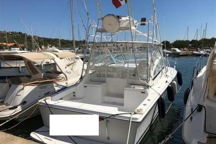 Luhrs 28 Hard Top for sale in Italy for €79,500 (£71,386)