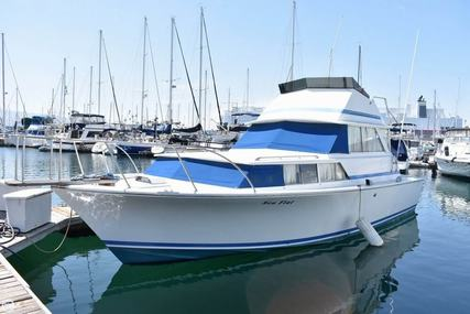 Bertram 35 Caribe Flybridge for sale in United States of America for $17,000 (£13,240)