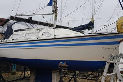 Sailfish 25 for sale in United Kingdom for £7,500