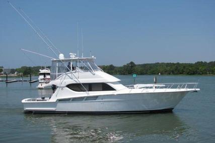 Hatteras Convertible for sale in Curaçao for $599,000 (£469,730)