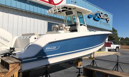 Image of Boston Whaler 300 Outrage for sale in United States of America for $184,900 (£143,589) Savannah, GA, United States of America