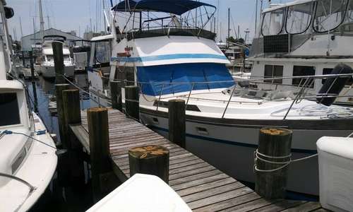 Image of President 41 for sale in United States of America for $55,000 (£41,465) Titusville, Florida, United States of America