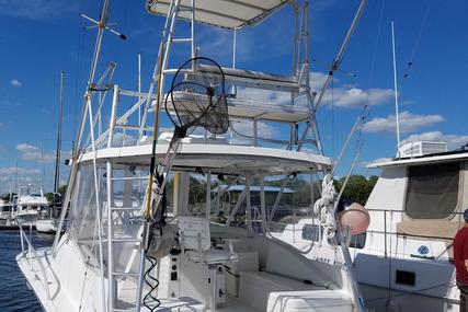 Luhrs Open for sale in United States of America for $49,900 (£37,163)