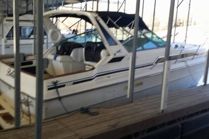 Sea Ray 34 for sale in United States of America for $20,500 (£15,473)