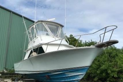 Blackfin Flybridge for sale in United States of America for $75,000 (£56,361)